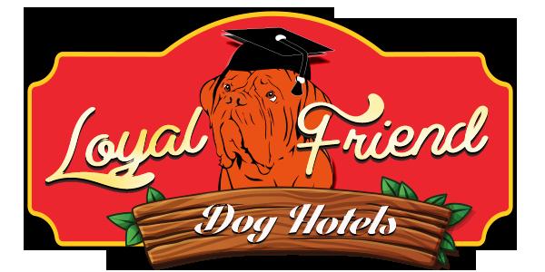 Köpek Oteli ve Pansiyonu, Dog Hotel