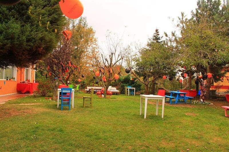 Loyal Friend Köpek Oteli ve Pansiyonu'nun rengarenk bahçesi.